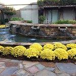 Foto de Callaway Gardens