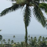 Photo of Vivanta by Taj - Green Cove