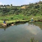 Fishing pond.