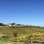 Picture of Tenuta di Corsano from the vineyard.