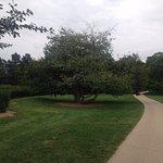 Photo de Morton Arboretum