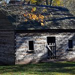 Slave Cabin at Sully Plantation