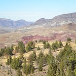 another view of Painted Hills