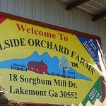 Hillside Orchard Farms
