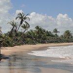 Vista da parte esquerda da praia de Algodões em frente ao restaurante