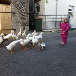 Elsie loved feeding the ducks!