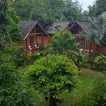 Der tropische Garten