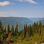 view of the Columbia River from the top of Mount Revelstoke