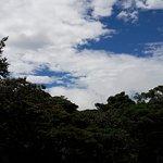 20161031_121905_large.jpg
