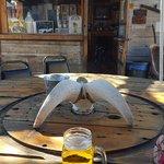 Happy Burro Chili & Beer Foto