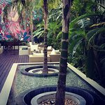 The Palm at Playa Foto