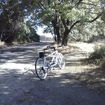 Our tandem bike while taking a brake at a picnic table along the river