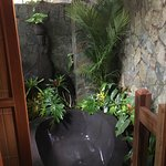 "This stone tub in the ""jungle"" was a fave amenity"