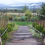 Foto de Husum Highlands Bed and Breakfast