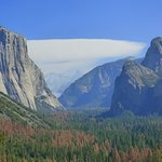 Photo de Half Dome Village