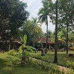 Photo of The Nattika Beach Resort