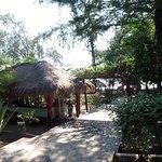 صورة فوتوغرافية لـ Biba Beach Cafe - Ristorante Italiano