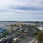 Foto de Hilton Garden Inn Kent Island