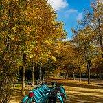 Photo de Blue Fox Travel