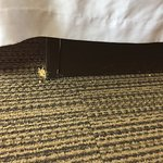 Photo de Four Points by Sheraton College Station