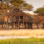 Treetop Lodge