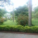 Photo de Hotel Yahaya