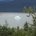 A free floating glacial iceberg