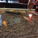 Fish swimming under my cocktail in the aquarium bar - very unique.