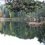 il lago con l'isolotto visto dalla nostra camera