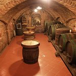 In our cellar you can listen to story about Prekmurje and taste some of our wines.