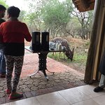 High tea with kudu in attendance!