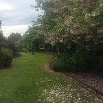 Where is the next cottage - hidden in the beautiful garden