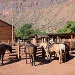 Foto Red Cliffs Lodge