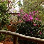Photo of Mara Sopa Lodge