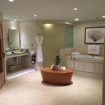 Luxurious bathroom side of spa suite