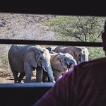 View from the underground hide (Photo by Drive South Africa, #TrekSouthAfrica)