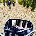 Bike About Tours Foto