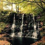 Glenariff Forest Park Caravan Park