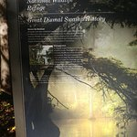History of Great Dismal Swamp