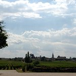 View towards St. Emilion from Chateau Soutard