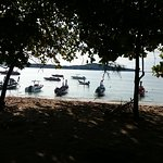 COCONUT Bar & Restaurant - Rawai Beach Foto