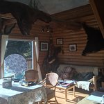 Breakfast room again. Mitch said the bear skins were killed with a credit card. (they were fake!
