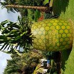 Giant pineapple at Hawaiian Trading post