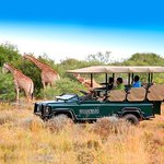 Touring South Africa - Day Tours
