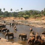 filleri balkondan izleme alanı