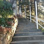 The long steps towards the reception