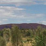 Longitude 131 Image