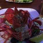 This was one awesome Lobster!!!