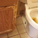 Entered the room to find someone else's urine in the toilet. The cabinet condition matches the r