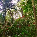 Nosara Wildlife Sanctuary at Sibu